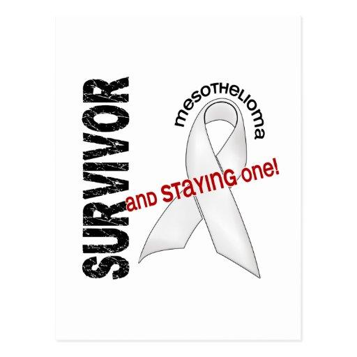 Mesothelioma Survivor Post Card
