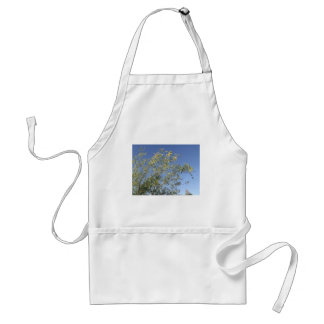 Mesquite Branches Against Sky Standard Apron
