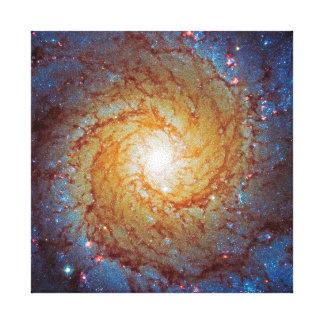 Messier 74 Spiral Galaxy Gallery Wrap Canvas