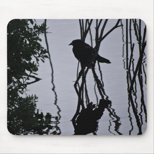 Messy Pond Reflection Mousepads