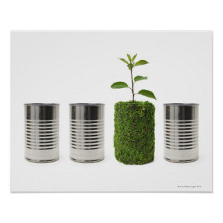 Metal cans and new seedling growth showing poster