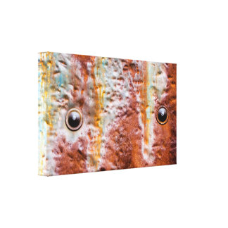 metal eyes rust stretched canvas print