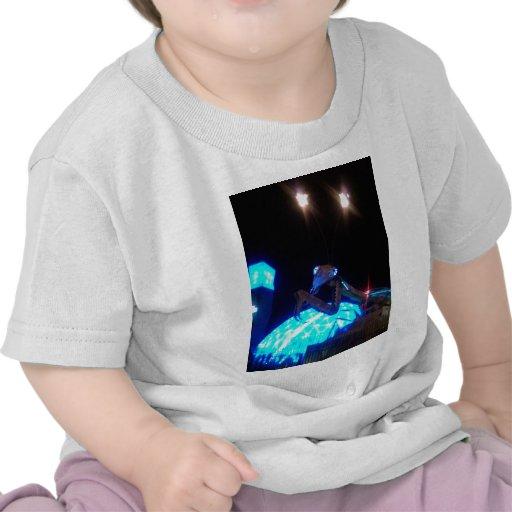 metal praying mantis - 1.jpg tee shirt