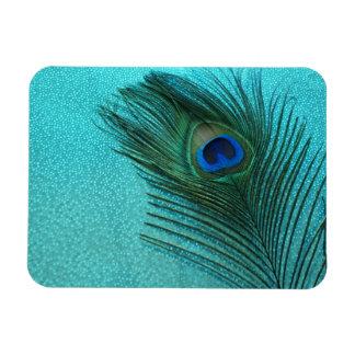 Metallic Aqua Blue Peacock Feather Magnet