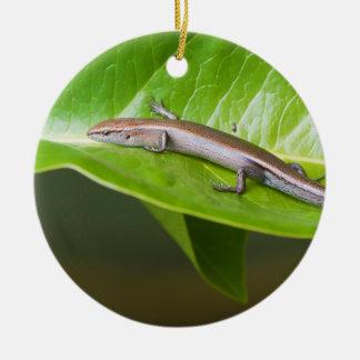 Metallic Cool Skink Niveoscincus Metallicus Christmas Ornament