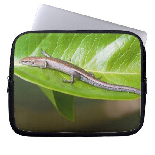 Metallic Cool Skink Niveoscincus Metallicus Laptop Sleeves