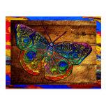 Metallic Rainbow Country Butterfly Postcard