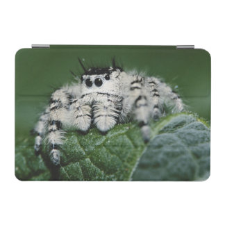 Metaphid Jumping Spider iPad Mini Cover