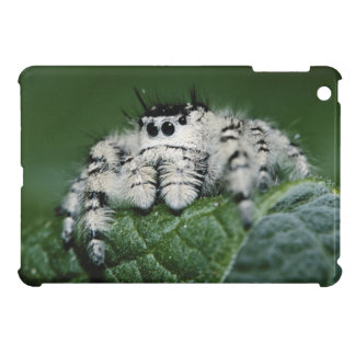 Metaphid Jumping Spider iPad Mini Covers