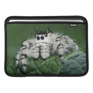 Metaphid Jumping Spider Sleeve For MacBook Air