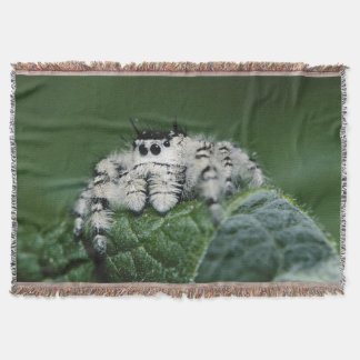 Metaphid Jumping Spider Throw Blanket
