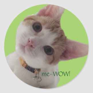 meWOW Curious Cat Good Job Customisable Sticker