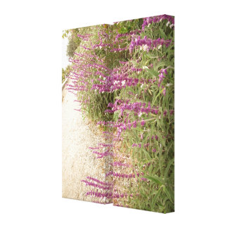 Mexican Bush Sage Garden Wrapped Canvas Stretched Canvas Print