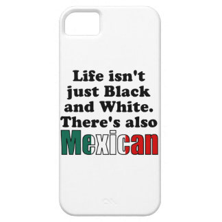 Mexican iPhone 5 Case