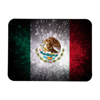 Mexican Flag Firework Flexible Magnets