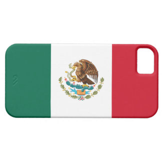 Mexican Flag iPhone Case iPhone 5 Cover