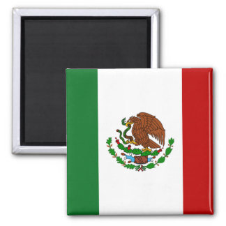 Mexican Flag Magnet