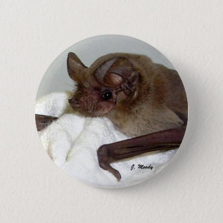 Mexican Free-tailed Bat 6 Cm Round Badge