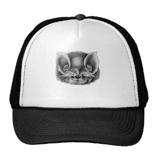 Mexican Funnel-eared Bat Mesh Hat