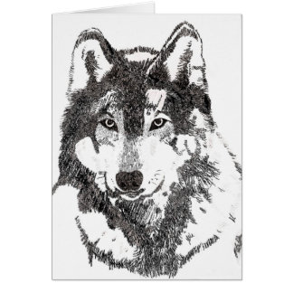 Mexican Grey Wolf Card