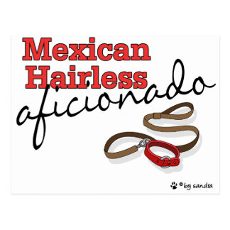 Mexican Hairless Postcard