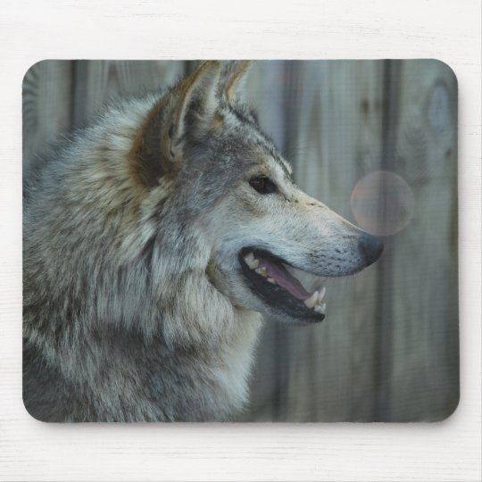 Mexican Wolf Mouse Pad