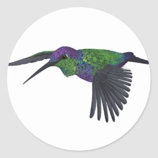 Mexican Woodnymph Hummingbird Classic Round Sticker