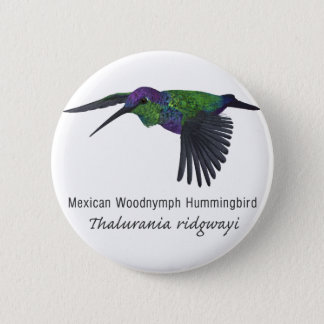 Mexican Woodnymph Hummingbird with Name 6 Cm Round Badge