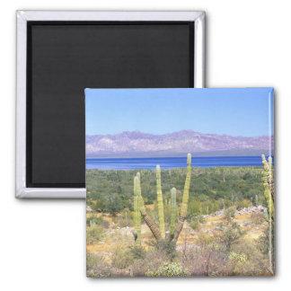 Mexico, Baja California Sur, Cardon Cactus at Magnet
