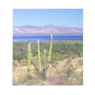 Mexico, Baja California Sur, Cardon Cactus at Notepad