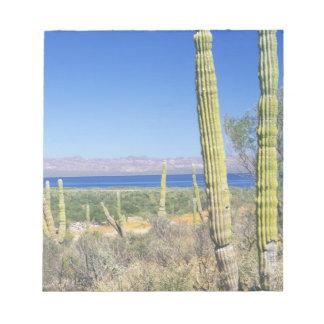 Mexico, Baja California Sur, Mulege, Bahia Notepad