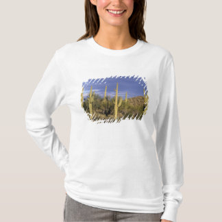Mexico, Baja del Norte, Catavina Desert National 2 T-Shirt