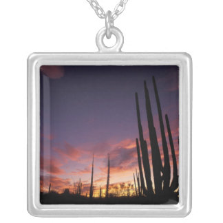 Mexico, Baja del Norte, Catavina Desert National 3 Silver Plated Necklace