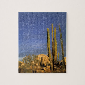 Mexico, Baja del Norte, Catavina Desert National Jigsaw Puzzle