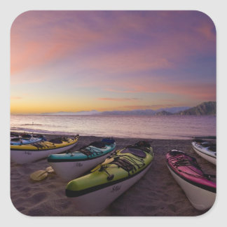 Mexico, Baja, Sea of Cortez. Sea kayaks and Square Sticker