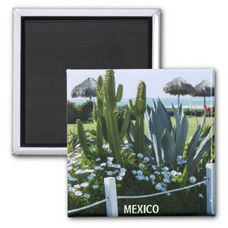 MEXICO CACTI REFRIGERATOR MAGNETS