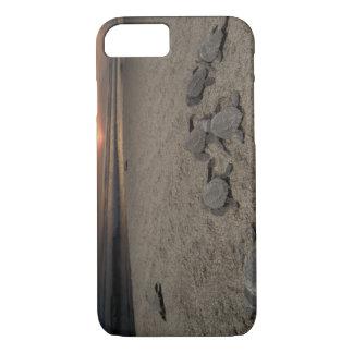 Mexico, Chiapas, Boca del Cielo Turtle Research iPhone 8/7 Case