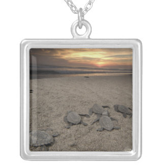Mexico, Chiapas, Boca del Cielo Turtle Research Silver Plated Necklace