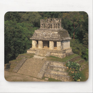 Mexico, Chiapas province,  Palenque, Temple of Mouse Mat