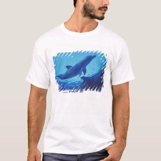 Mexico, Cozumel. Bottlenosed Dolphin, Tursiops T-Shirt