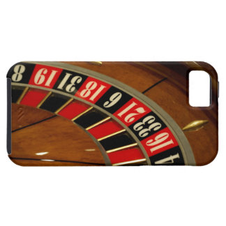 Mexico cruise. Princess Cruises Dawn Princess 5 iPhone 5 Cover
