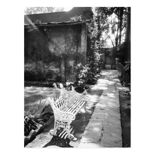 MEXICO, D.F., Mexico City, COYOACAN: Bench at Postcard