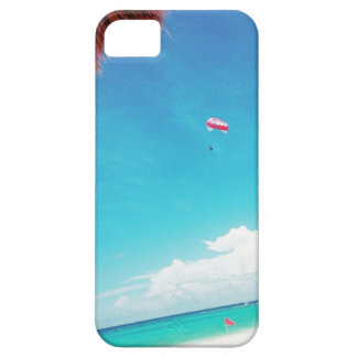 Mexico dreams iPhone 5 cases