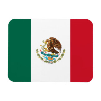 Mexico Flag Rectangular Photo Magnet