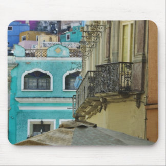 Mexico, Guanajuato. Densely packed assortment of Mouse Mat