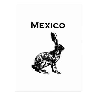 Mexico Jackrabbit Logo Postcard