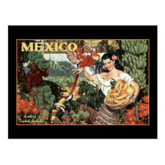 mexico land of tropical splendour postcard