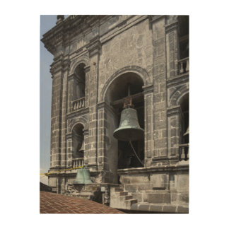 Mexico, Mexico City, Zocalo. The Bell Towers Wood Wall Decor