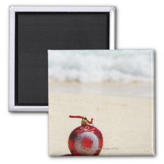 Mexico, Playa Del Carmen, christmas decoration Square Magnet