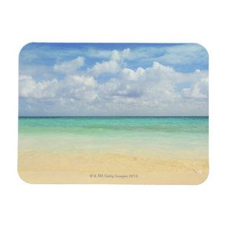 Mexico, Playa Del Carmen, seascape 2 Flexible Magnets